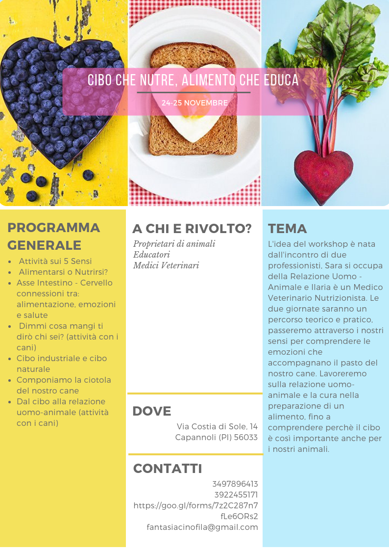 Flyer Alimento che Educa.png