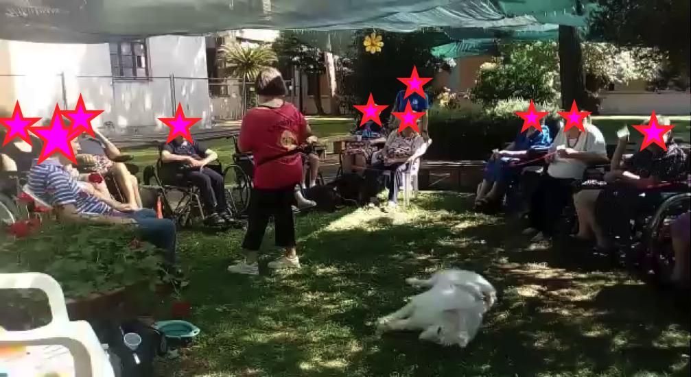 Anziani, Cani, Estate, Yoga della Risata e Pet-Therapy