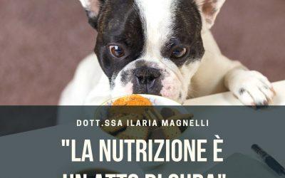 Nutrizione per cani e gatti: intervista con la dott.ssa Ilaria Magnelli, medico veterinario nutrizionista